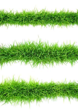 Bovenaanzicht van gras op een witte achtergrond