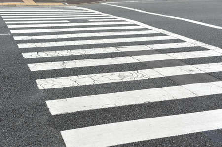 zebra crossing photo