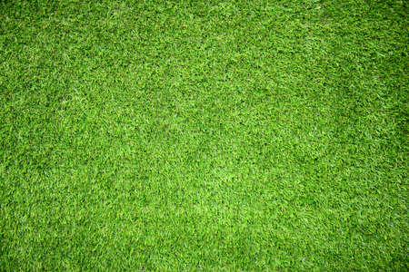 terrain foot: terrain en herbe