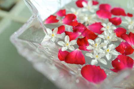 aroma bowl: Aroma Bowl
