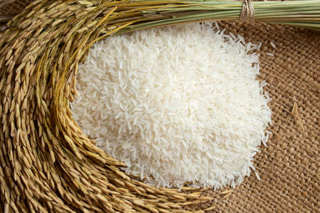 white rice with rice grain