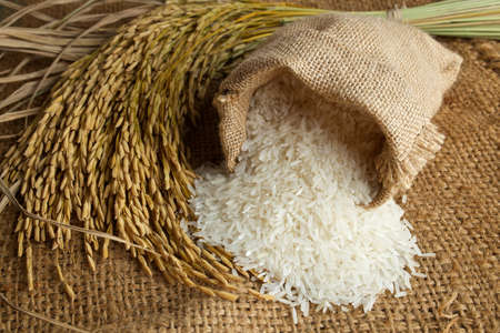 white rice in burlap sack with rice grain