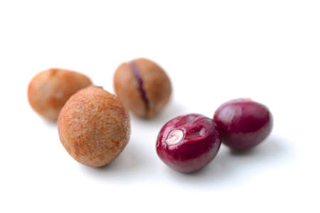 groundnut: Bambarra Groundnut
