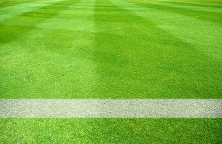 terrain foot: lignes blanches d'un terrain de jeu