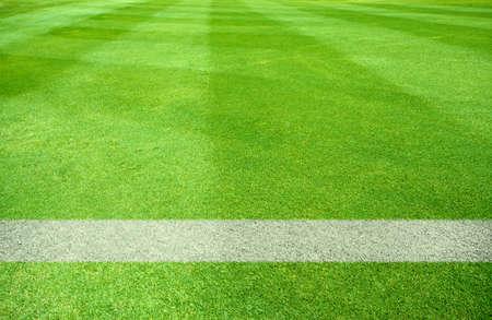 campo di calcio: linee bianche di un campo da gioco