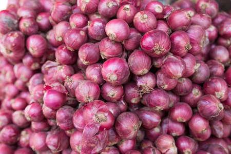cebollitas: cebollas rojas