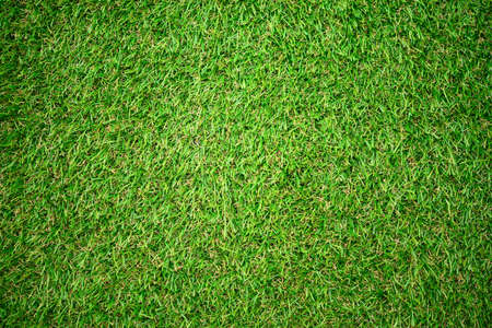 backgroung: artificial grass backgroung Stock Photo