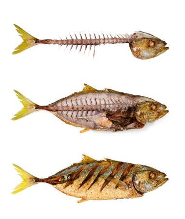 pescado frito: Fishbone con pescado frito