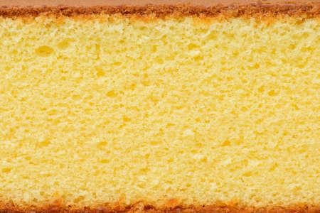 close up sponge cake