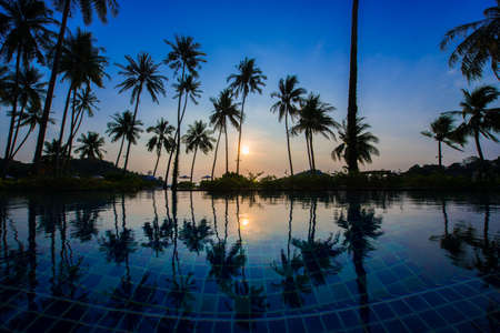 no swimming: Swimming pool with sunrise