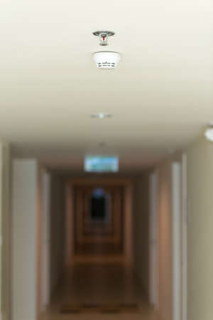 sprinkler alarm: fire sprinkler in hallway apartment