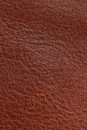 antique background: brown leather texture Stock Photo