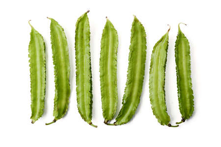 winged: row of winged bean on white background
