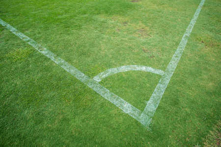 conner: soccer field with white stripe conner