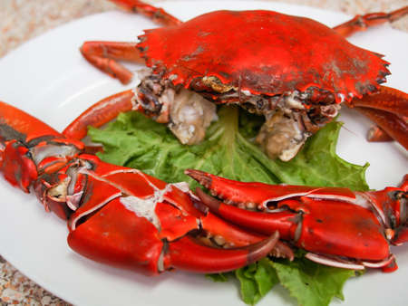 dungeness: steamed crab