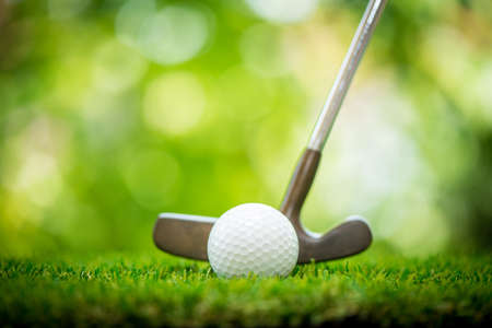 golf ball and putter on green