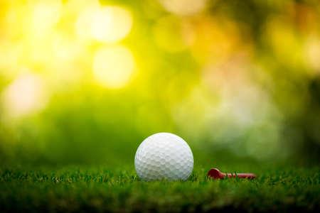 golf ball with tee on fairway Stock Photo