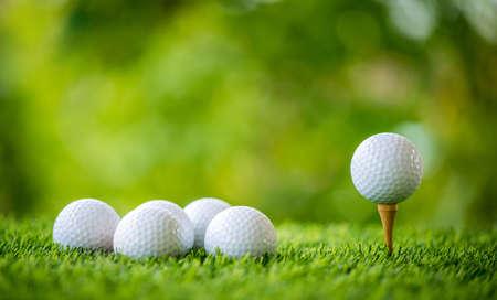golf ball on tee ready to practice Stock Photo