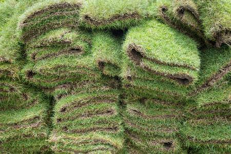 heap of natural grass turfs for garden installing Stok Fotoğraf