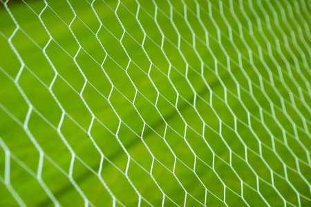 Soccer goal net on grass field