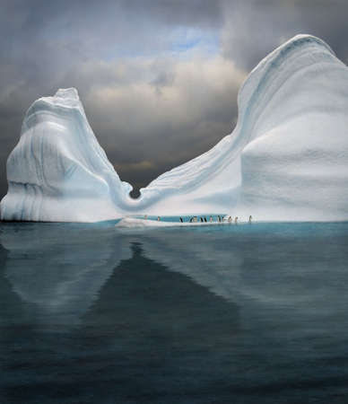 iceberg with penguins looks like swimming pool photo