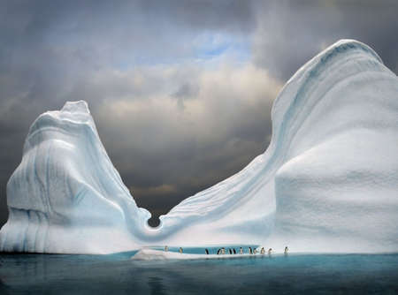 iceberg with penguins looks like swimming pool Standard-Bild