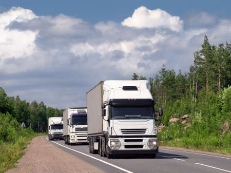 clean street: caravan of white trucks on summer country highway