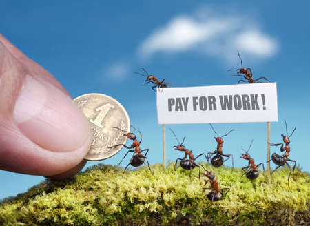 ants demanding payment for work with bill photo