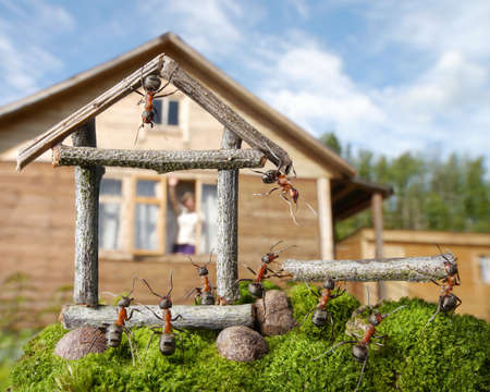 woman greetings team of ants constructing house, ant tales Banque d'images
