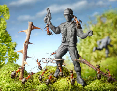 hands up  ants capture terrorist - toy soldier, ant tales Stok Fotoğraf