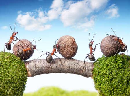 Team der Ameisen rolling stones auf die Brücke, Teamwork Lizenzfreie Bilder