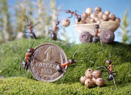 hormiga caricatura: mercado hormigas, compra, cuentos de la hormiga Foto de archivo