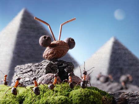 ant cartoon: hormigas civilizaci�n, la esfinge y la pir�mide, los cuentos de hormigas Foto de archivo