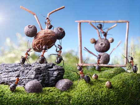 ant: hormigas escultores, los cuentos de hormigas Foto de archivo