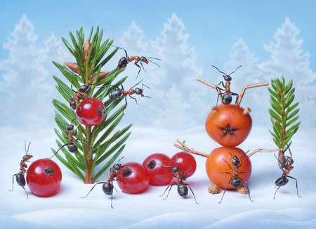 antrey: ants make Christmas tree and Santa Claus for New Year, ant tales
