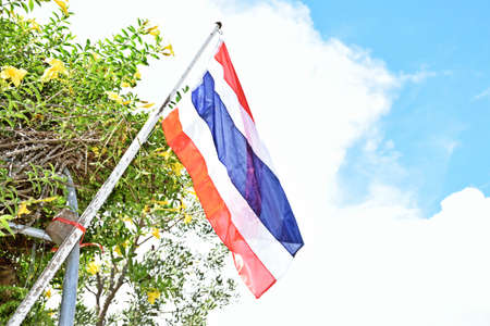 whiteness: national Thai flag , there is three a color , The blue , whiteness , The red , there is five the strip [ zone ] , a Thai likes to decorate with flags in front a house Stock Photo