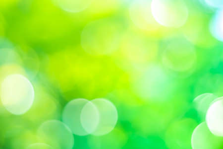 Green nature sunlight colorful bokeh abstract background .Vintage pastel color tone style.