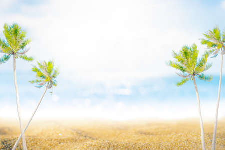 Tropical nature clean beach palm beach and white sand in summer with sun light blue sky and bokeh abstract  background.