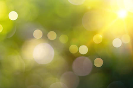 Green nature sunlight colorful bokeh abstract background .Vintage pastel color tone style. Banque d'images