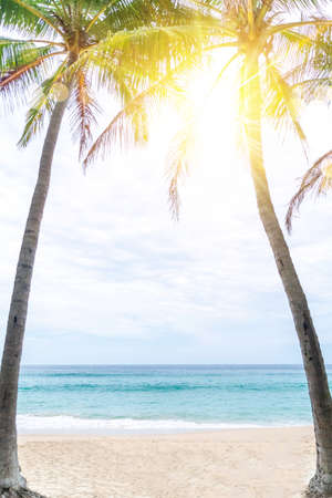 tropical palms tree at summer beach with blue sky and sun light background. 免版税图像 - 154837511