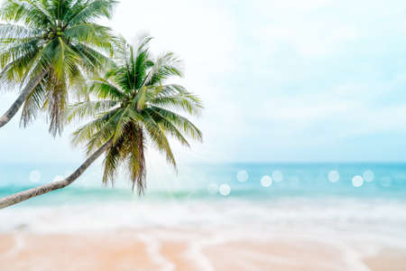 Tropical nature clean beach and white sand in summer with palm tree leaf sun light blue sky and bokeh abstract  background. 免版税图像 - 154743444