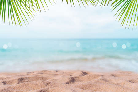 Tropical nature clean beach and white sand in summer with palm tree leaf sun light blue sky and bokeh abstract  background.