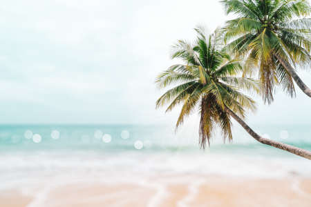 Tropical nature clean beach and white sand in summer with palm tree leaf sun light blue sky and bokeh abstract  background. 免版税图像 - 154743493