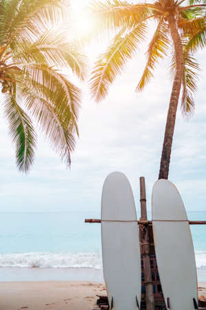 Many surfboards beside coconut trees at summer beach with sun light and blue sky background. 免版税图像 - 154854053