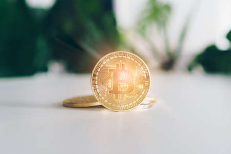 Symbol of Bitcoins as digital money cryptocurrency with nature background with copyspace that you can put text on.