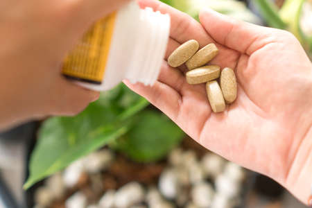 Top view of alternative organic medicine or herbal viatmin supplement capsule tablet on woman hand with copyspace background. Concept of healthy eating lifestyle. 免版税图像 - 164024977