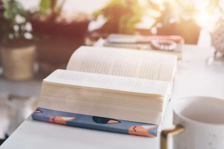 Book on table in workspace area with nature background feeling relax and peaceful environment. Education business concept.