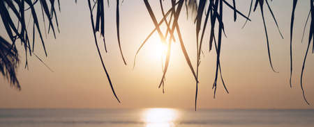 Tropical nature clean beach sunset sky time with sun light cover banner background. 免版税图像
