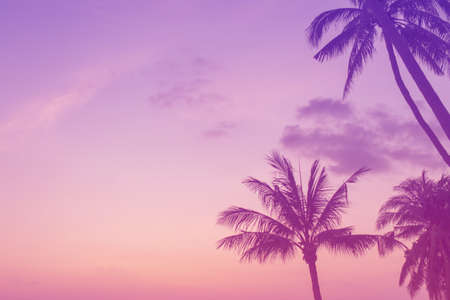 Tropical nature clean beach and white sand in summer season with sun light colorful pink purple background.