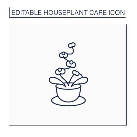 Phalaenopsis line icon Illustration